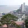 Guayas From Santa Ana
