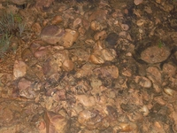 Gudiyam Caves