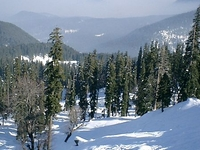 Gulmarg Ski Resort