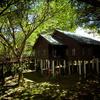 Gunung Mulu National Park - Sarawak