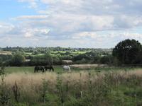 Glebe Lane Pastures