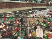 San Juan de Dios Market