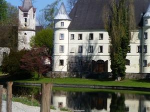 Hagenau Castle