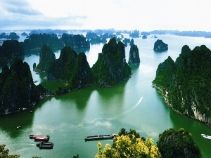 Halong Bay Promotion