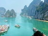 Tourist Boats In The Ha Long Bay