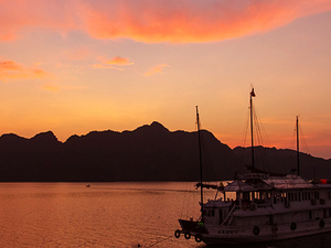 Bai Tu Long Bay Best Deals: Paloma Cruise