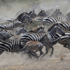 6 Day Tanzania Camping Safari