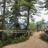 Hiking Tiger's Nest (Paro Taktsang)