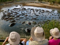 Keekorok Lodge Hippo Pool