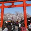Hirano Shrine Torii Gate