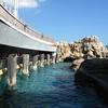 HK Ocean Park Pacific Pier Interior