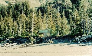 Holgate Arm Cabin