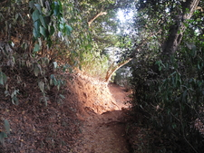 Honeymoon Point Trail - Matheran - Maharashtra - India
