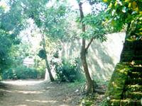 Ho Quyen - Tiger Arena