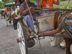 Horse Carriage Village tour in Candirejo Fotos