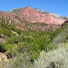 Horse Ranch Mountain - Zion - Utah - USA