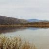 Horseshoe Lake - Tonto National Park