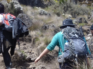 Kilimanjaro Trekking Through Machame Route