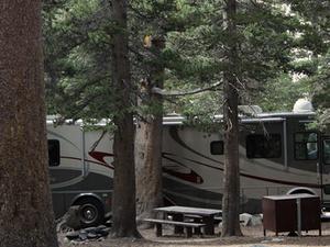 Humboldt-Toiyabe Trumbull Lake Campground