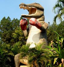 Big Boxing Crocodile