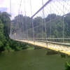 Hanging Bridge Across Chaliyar 1