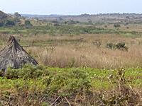 Ngaoundal