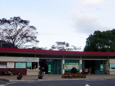 Hiroshima City Asa Zoological Park, Japón Información ...