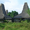Traditional Sumbaneese Houses