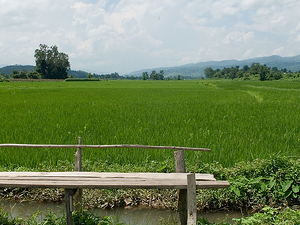 Hsipaw