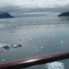 Icebergs In Yakutat Bay