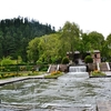 Inside Mughal Gardens Achabal