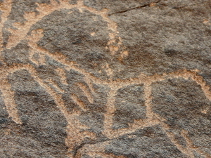 Bir Hima Rock Petroglyphs And Inscriptions