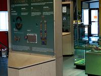 Montréal Insectarium