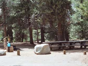Jackass Meadow Campground