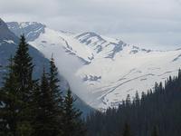 Jackson Glacier Trail