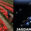 Jagdamba Holidays