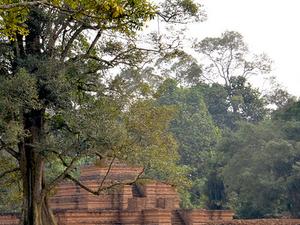 Explore Muara Jambi Temples (The largest Temple area in SEA) Photos