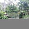 Jardin de la Marquesa