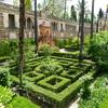 Jardins De L Alcazar Seville