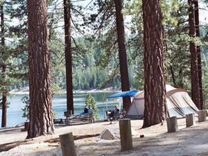Jerseydale Campground