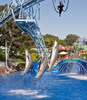 Jumping Dolphin In Sea World San Diego