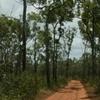 Jardine River National Park