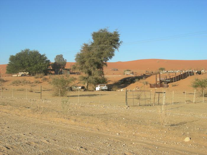 Kalahari Botswana  City new picture : Deserto de Kalahari, Botswana Fotos