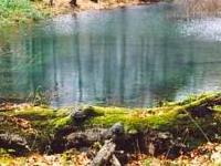 Kamień nad Jaśliskami Nature Reserve