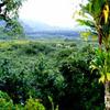 Kaumahina State Wayside