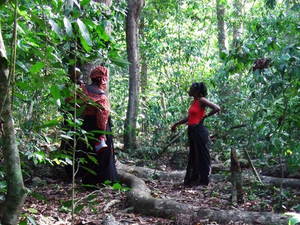 Mijikenda Kaya Forests