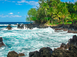 Maui Island Day Tour Photos