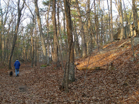 Kellner Trail 242