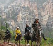 Ken Patrick Trail