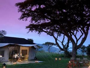 Kenya Camping Safaris Photos